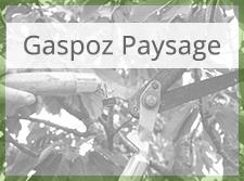 Gaspoz Paysage